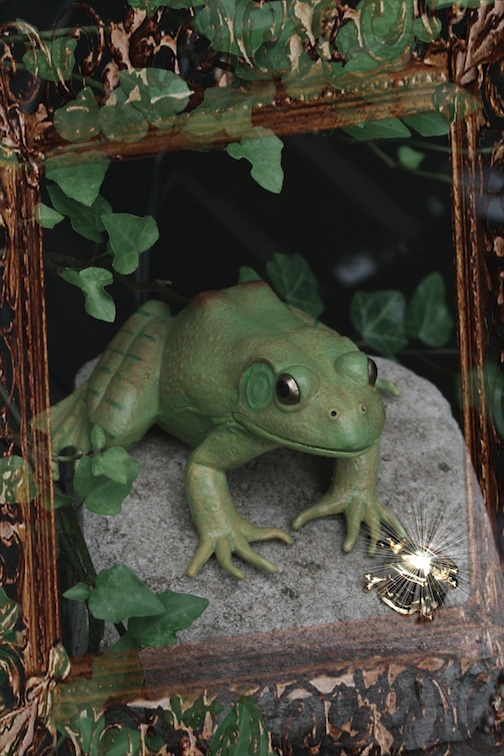 FrogPM.2.5